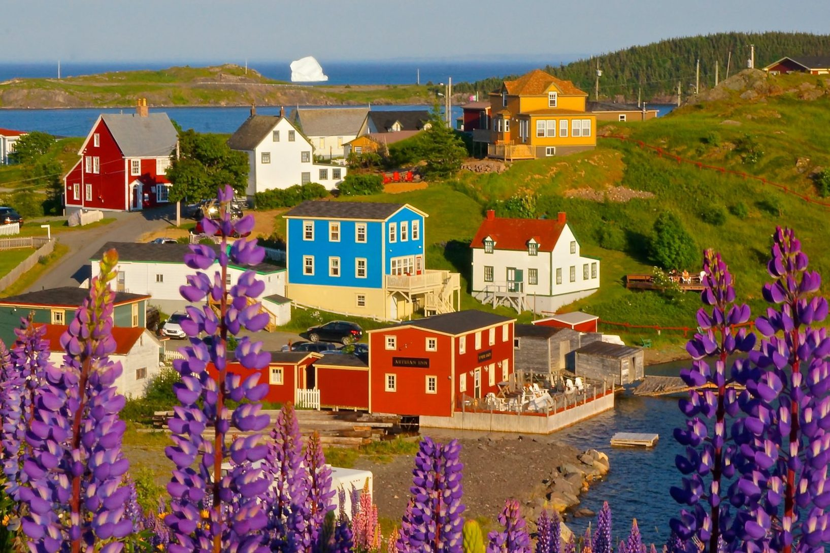 View of Artisan Inn and Vacation Homes in Trinity Newfoundland
