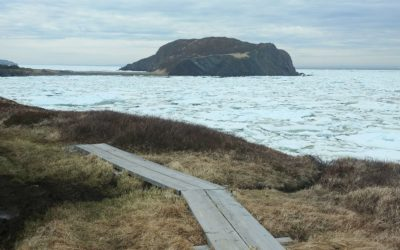 A board walk along the ocean overlooking fox island encircled by pack ice