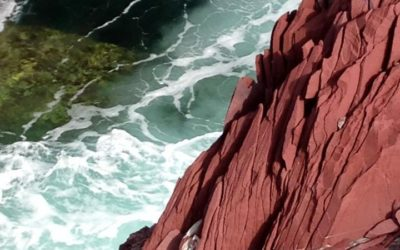 Red Cliffs of Tickle Cove