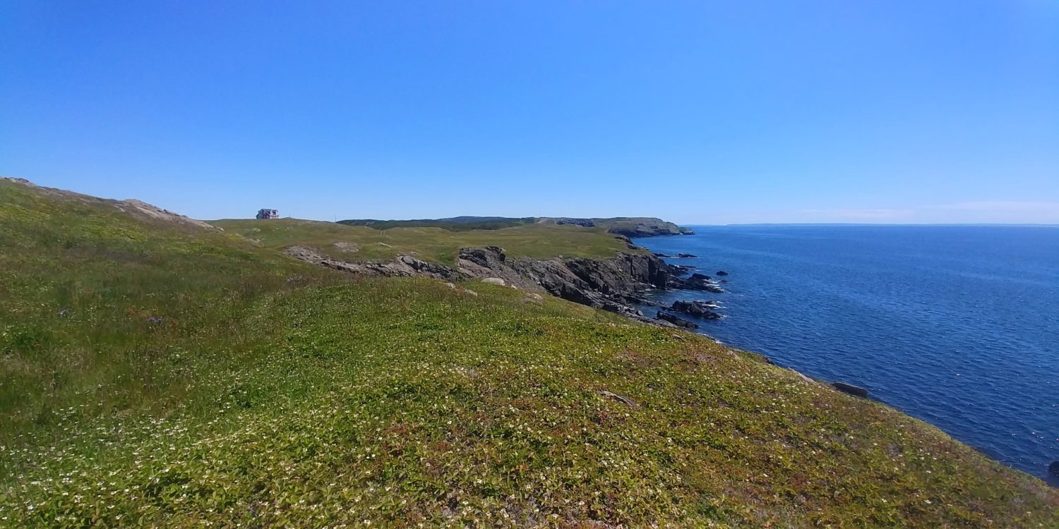 Cliffs of English Harbour