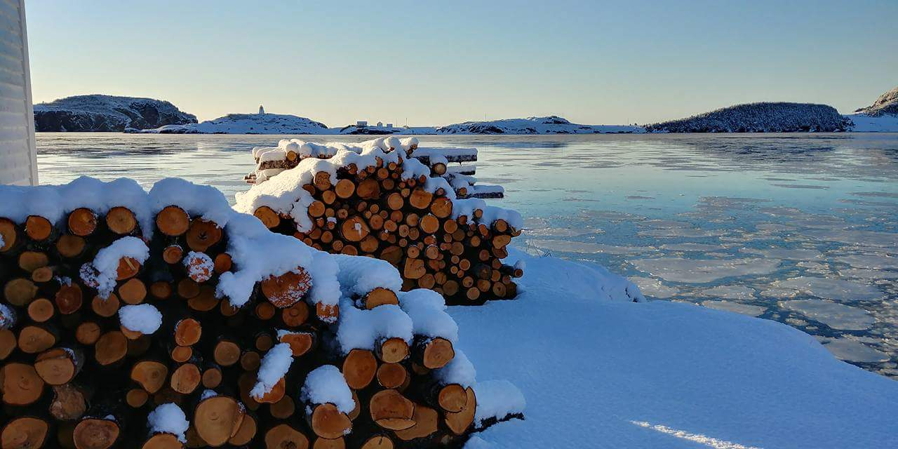 Woodpile covered in snow